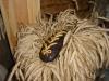 aglonas-maizes-muzejs-galva4